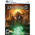 Kalypso Dungeons for Windows (1-User) [Boxed]