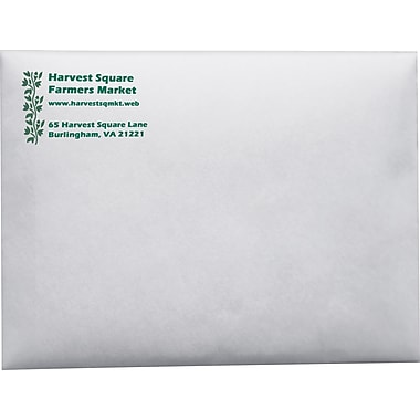 Custom Catalog Envelopes