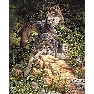Dimensions Paint By Number Kit, 16in. x 20in., Wild & Free Wolves