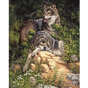 "Dimensions Paint By Number Craft Kit Painting, 16"" x 20"", Wild & Free Wolves (91416)"