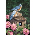 Dimensions Paint By Number Kit, 14in. x 20in., Garden Bluebirds