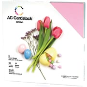 "American Crafts Cardstock Pack, 12"" x 12"", Spring"