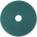 3M Nylon / Polyester Fiber 5300 Cleaner Pad, Blue, 17in.(Dia)