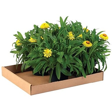 24''x15''x1.75'' Shipping Box, 200#/ECT, 50/Bundle (24152CTW)