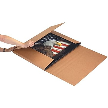 28in. x 22in. x 6in. - Staples Kraft Jumbo Mailer