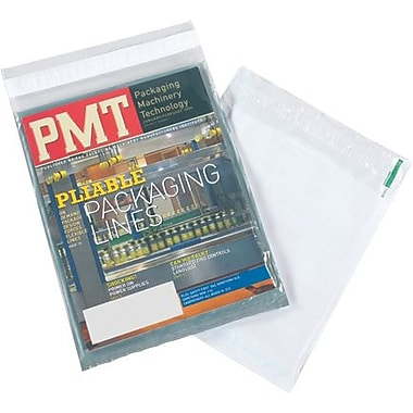 Staples Clear View Poly Envelopes