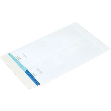 6in. x 9in. Flat Ship-Lite® Envelope, 100/Case