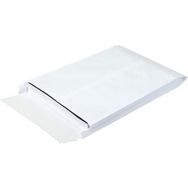 10in. x 13in. x 2in. Expandable Ship-Lite® Envelope, 100/Case