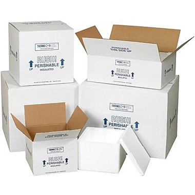 09 1/2in.(L) x 9 1/2in.(W) x 7in.(H) - Staples Insulated Shipping Container, 4/Case
