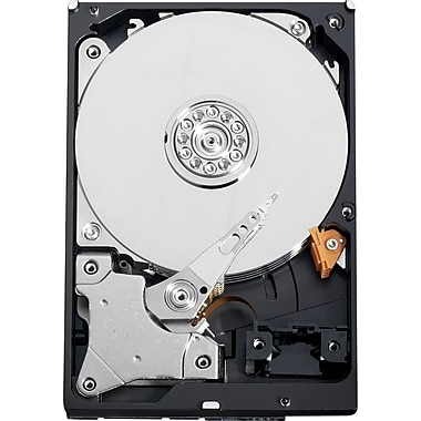 WD Sentinel DX4000 3TB SATA 3.0 (3 Gb/s) - 3.5in. Desktop Internal