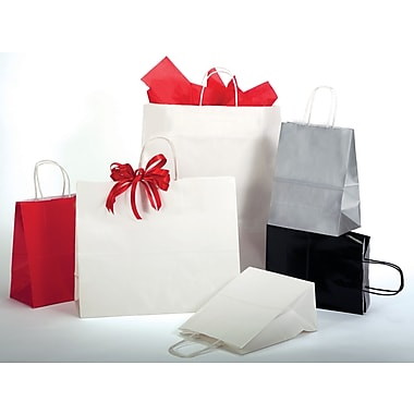 Bonita Paper Shopping Bags - Gloss Colors