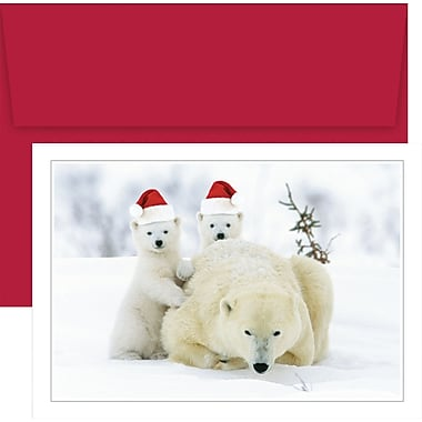 Great Papers® Santa Hat Bears  Boxed Holiday Cards & Envelopes