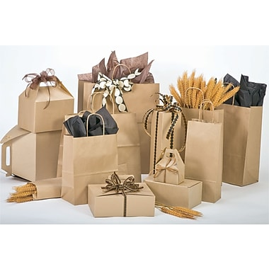 Bonita A La Carte 8in. x 4.75in. x 10.5in. Shopping Bag, Natural Kraft