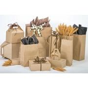 Bonita A La Carte 8 x 4.75 x 10.5 Shopping Bag, Natural Kraft