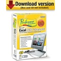 Professor Teaches Excel 2003 Advanced for Windows (1-User) [Download]