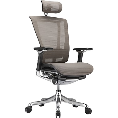 Raynor nefil Pro Smart Motion Mesh Managers Chair with Headrest, 3D Gray