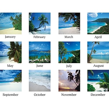 2014 AT-A-GLANCE® Tropical Escape Desk Pad, 22in. x 17in.