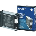 Epson T480011 Black Ink Cartridge