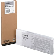 Epson 606 220ml Light Black UltraChrome Ink Cartridge (T606700), High Yield