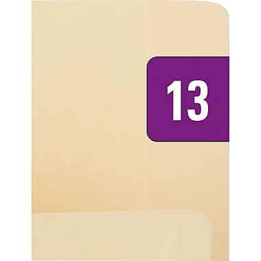 Smead® End-Tab Bar Style Color-Coded Year Labels, 2013 - Purple