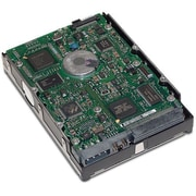 HP® IMSourcing 300 GB Ultra320 SCSI 15000 RPM 3 1/2 Internal Hard Drive (411089-B22)