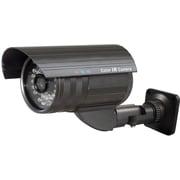 Avue® AV762SDIR Indoor/Outdoor IR Bullet Network Camera
