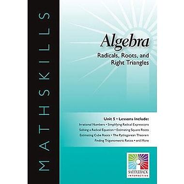 Saddleback Educational Publishing® Radicals, Roots, and Right Triangles; IWB, Algebra, Grades 6-12