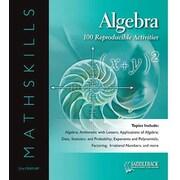 Saddleback Educational Publishing® Mathskills Algebra; Enhanced eBook