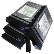 Lenovo™ 300 GB SAS (6 Gb/s) 15000 3 1/2 Internal Hard Drive (67Y1437)