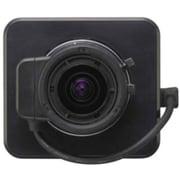 Sony® SSCG113A Color Analog Fixed Surveillance/Network Camera