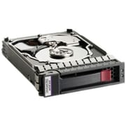 HP® IMSourcing 300 GB SAS (3 Gb/s) 15000 RPM 3 1/2 Internal Hard Drive (480938-001)
