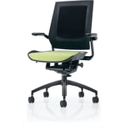 Raynor Bodyflex Fabric Manager's Chair, Green