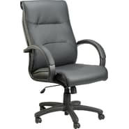 Raynor Eurotech Prima Leather Executive Chair, Black