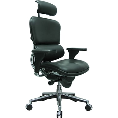 Raynor Eurotech Leather High Back Ergo human Chair, Black