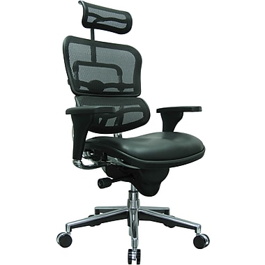 Raynor Eurotech Mesh/Leather High Back Ergo human Chair, Black