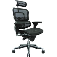 Raynor Eurotech Ergo human High Back Managers Chairs with Headrest and Mesh