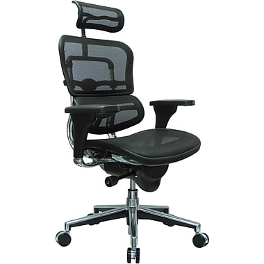 Raynor Eurotech Ergo human High Back Managers Chair with Headrest and Mesh, Black