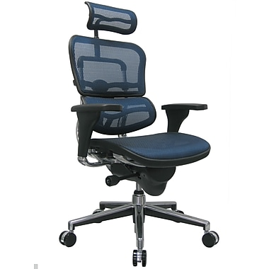 Raynor Eurotech Ergo human High Back Managers Chair with Headrest and Mesh, Blue