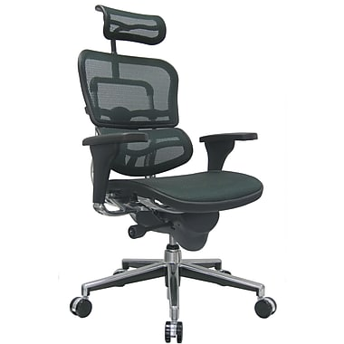 Raynor Eurotech Ergo human High Back Managers Chair with Headrest and Mesh, Green