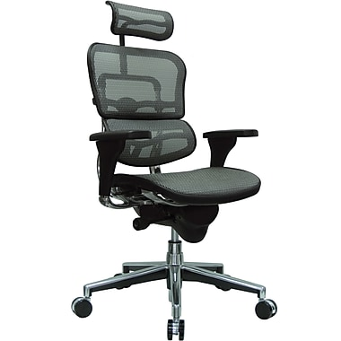 Raynor Eurotech Ergo human High Back Managers Chair with Headrest and Mesh, Gray