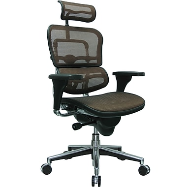 Raynor Eurotech Ergo human High Back Managers Chair with Headrest and Mesh, Orange