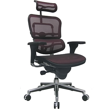 Raynor Eurotech Ergo human High Back Managers Chair with Headrest and Mesh, Plum Red