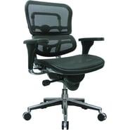 Raynor Eurotech Ergo human Mesh Mid Back Task Chair, Black