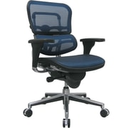 Raynor Ergohuman Mesh Computer and Desk Office Chair, Blue, Adjustable Arm (ME8ERGLO-BLUE(N)