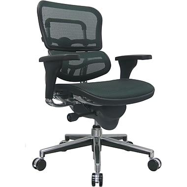 Raynor Eurotech Ergo human Mesh Mid Back Task Chair, Green