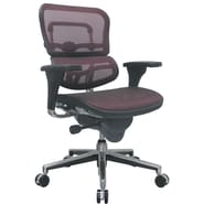 Raynor Eurotech Ergo human Mesh Mid Back Task Chair, Plum Red