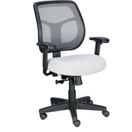 Raynor Eurotech Apollo Mesh Back Task Chair, Silver