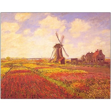 Trademark Global in.Tulips in a Field Framedin. Canvas Art, 24in. x 32in.