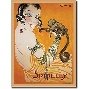 Trademark Global in.Spinellyin. Gallery Wrapped Canvas Art, 35in. x 47in.
