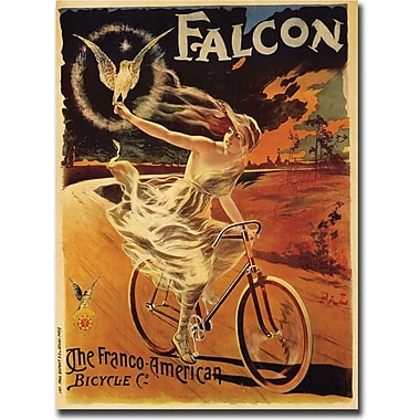 Trademark Global Pal in.Falconin. Framed Canvas Art, 18in. x 24in.